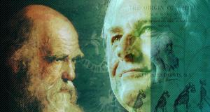 داروين نظرية التطور الفلسفة لماذا خلق الإنسان؟  النظرية الداروينية