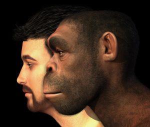 كيف غير التطور نظرة الإنسان إلى نفسه