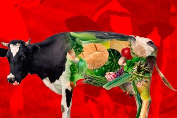 بدائل-اللحوم