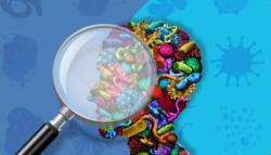 دور الفيروسات في تطورنا .. بسبب الفيروسات تكونت ذاكرتنا وشكل وجوهنا.. وتمكننا من حمل جنين في أرحامنا