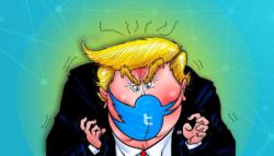 السوشال ميديا تسييس الخوازميات صناعة الرأي اليسار ترامب فيسبوك تويتر