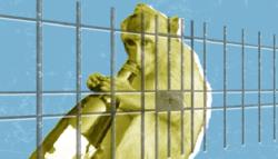 القرد المدمن - كالوا - الهند - إدمان الكحول - عقوبة الحيوانات - القرد القاتل