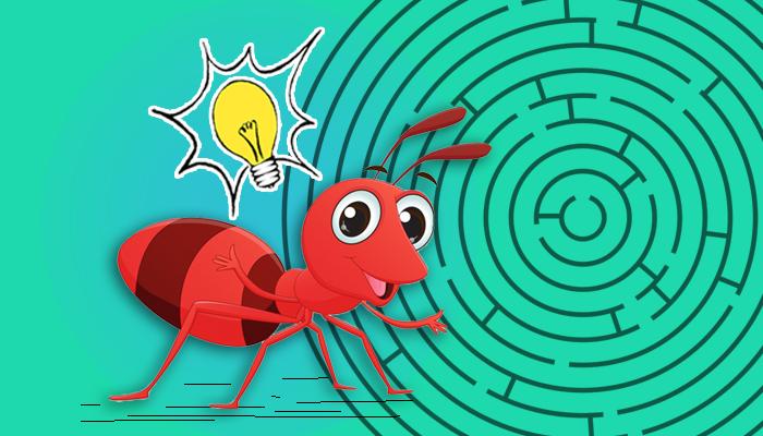 مخ النملة - دماغ النمل - النحل