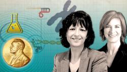 نوبل للكيمياء 2020 ماذا قدمت تقنية كريسبر للبشرية؟ حلم الطفل المثالي التحرر الجيني
