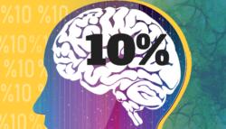 الدماغ البشري مكونات عمل معلومات عن وظائف علم الأعصاب