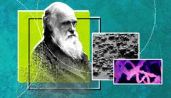 كيف بدأ الخلق - أصل الحياة - داروين
