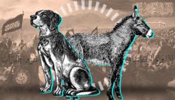 أحاديث نجاسة الكلب تربية الكلاب حكم حلال أم حرام