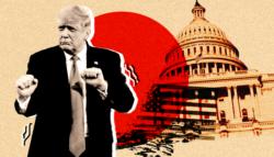 ترامب والنظام الانتخابي الأمريكي - النظام الانتخابي الأمريكي - الحزب الجمهوري - الانتخابات الأمريكية