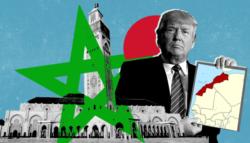 اعتراف ترامب بتبعية الصحراء الغربية للمغرب - السيادة المغربية على الصحراء الغربية - المغرب والبوليساريو - المغرب والجزائر