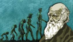 تشارلز داروين - نظرية التطور - التصميم الذكي - عصافير داروين - نظرية الخلق