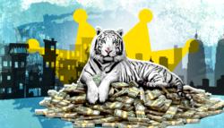 The White Tiger - ريفيو فيلم النمر الأبيض - فيلم النمر الأبيض - السينما الهندية -  أفلام نتفلكيس