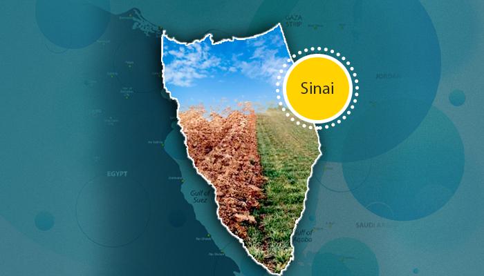 تعمير سيناء - تطوير بحيرة البردويل - تحويل سيناء لأراضي زراعية - تحويل الصحراء إلى اللون الأخضر - الاستمطار